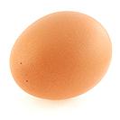 egg-dreamstimefree_1868066.jpg