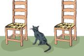 6-katt d.jpg